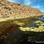 Atacama - El Tatio008