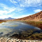 Atacama - El Tatio009