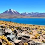 Atacama - Lagunas Altiplanicas001