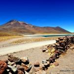 Atacama - Lagunas Altiplanicas002