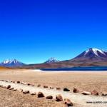 Atacama - Lagunas Altiplanicas003