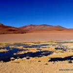 Atacama - Salar de Pujsa002