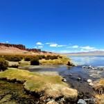 Atacama - Salar de Tara006