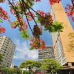 Belo Horizonte006