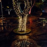 Luzes de Natal-20