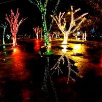 Luzes de Natal-25