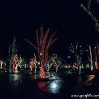 Luzes de Natal-26