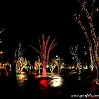 Luzes de Natal-27