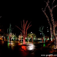 Luzes de Natal-28