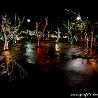 Luzes de Natal-29