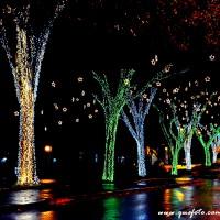 Luzes de Natal-33