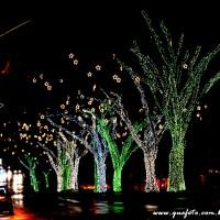 Luzes de Natal-34