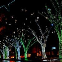 Luzes de Natal-39