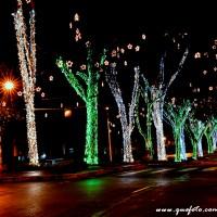 Luzes de Natal-40