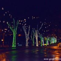 Luzes de Natal-41