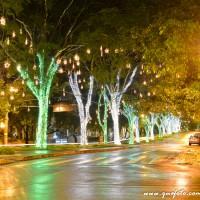 Luzes de Natal-42