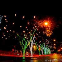 Luzes de Natal-43