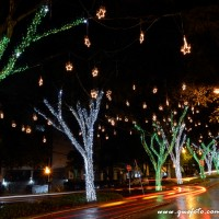 Luzes de Natal-44