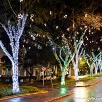 Luzes de Natal-45
