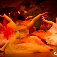 Paula-Ballet-site-46