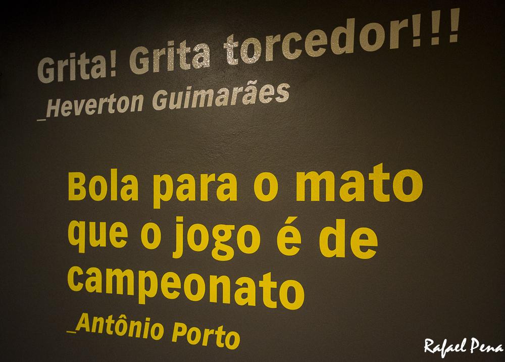 Rafael-Copa Mineirão-site-73